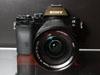 索尼 A7R 新玩具:蔡司 24-70mm f4 变焦镜
