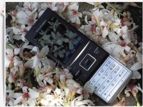 社群聯繫不中斷:Sony Ericsson Hazel J20