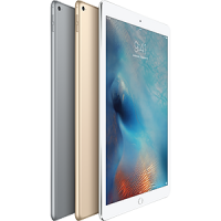 Apple iPad Pro  12 吋 (Wi-Fi, 32GB)