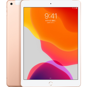 Apple iPad (2019) (4G, 128GB)